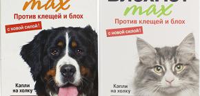 หมายถึง Blohnet สำหรับแมวและสุนัข: บทวิจารณ์และคำแนะนำในการใช้