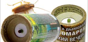 ระเบิดควันบุหรี่เพื่อฆ่าแมลงสาบในอพาร์ตเมนต์