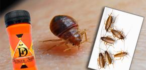 วิธีแก้ปัญหาสำหรับ bedbugs และแมลงสาบ Delta Zone: คำอธิบายและบทวิจารณ์