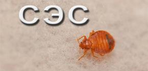 สุขาภิบาลของสถานที่จาก bedbugs ใช้ Sanepidemstantsii (SES)