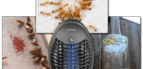 การตรวจสอบประสิทธิภาพของแมลงในการบินและการรวบรวมข้อมูลแมลง