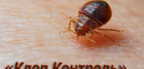 บริการกำจัดแมลงและการควบคุมห้องโดยสารและการทำงานของมัน