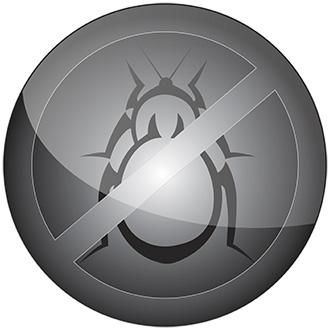 th.bedbugus.biz